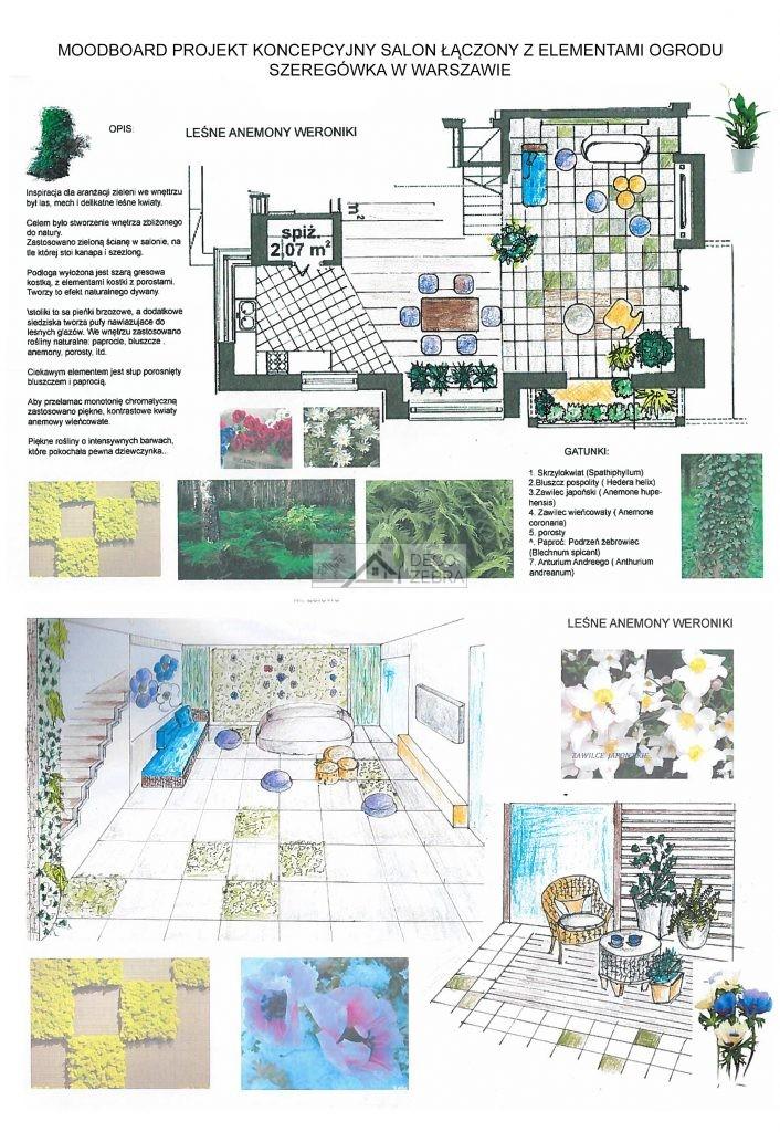 Projekt Salonu Z Aneksem Kuchennym I Roślinami